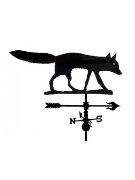La volpe (Vulpes vulpes)