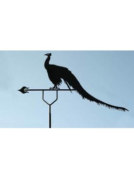 Grande Pavone di 160 cm banderuola segnavento