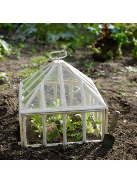 Handlights Cloche for vegetables