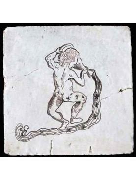 Il segno Zodiacale dell'Acquario