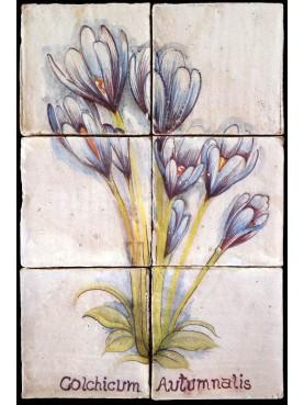 Flowers maiolica panel Colchicum