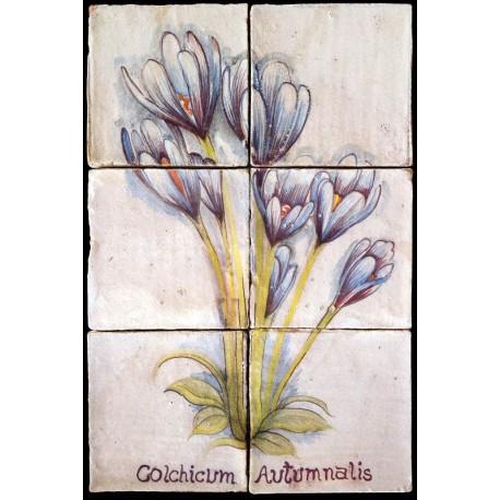 Pannello maiolicato fiori Colchicum