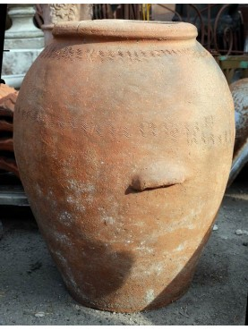 Olive oil ancient Jare H.70cms