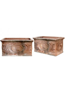 Cassetta in terracotta con Pecten Jacobaeus