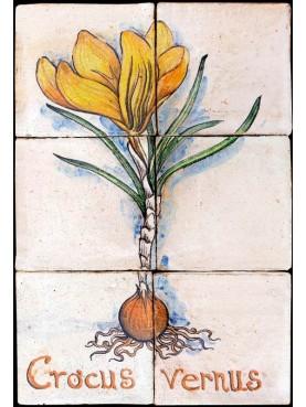 Pannello maiolicato Crocus vernus