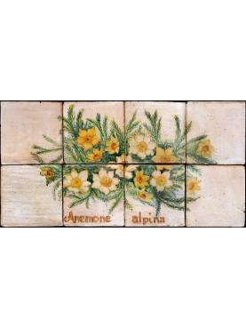 Pannello maiolicato Anemone alpina