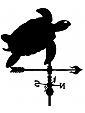 Tartaruga segnavento banderuola Caretta caretta