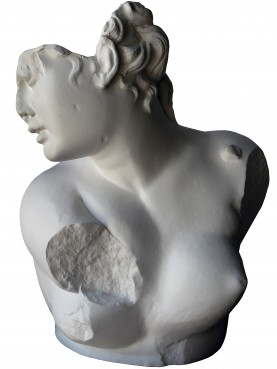 Gesso, busto dell'Afrodite accovacciata