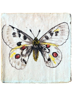 Hand made majolica tile with Apollo butterfly