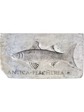Mullet fish - Mugil cephalus in white Carrara marble