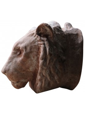 Terracotta lion head