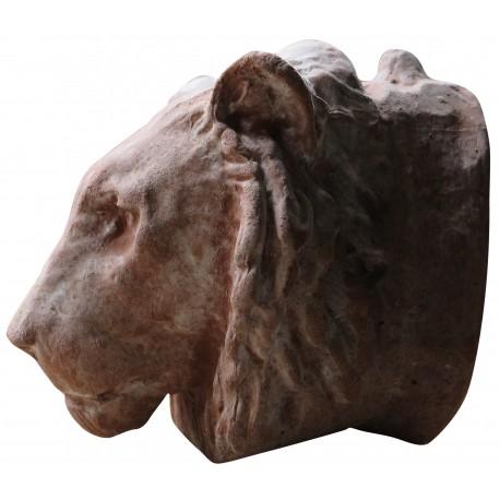 Testa di leone in terracotta