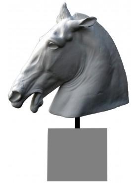 Cavallo di Lisippo Musei Capitolini Roma con base