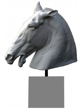 Lisippo's Horse's head plaster cast with base