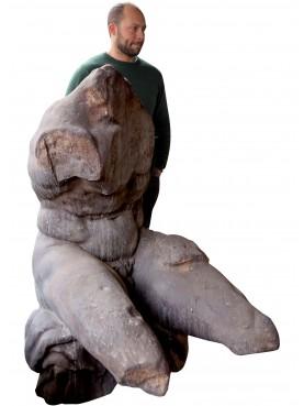 Il nostro busto del Belvedere 1:1 patinato a regola d'arte