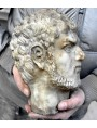 Our aged head of Caracalla