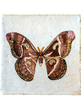 Butterfly - Cecropia moth - majiolica tile