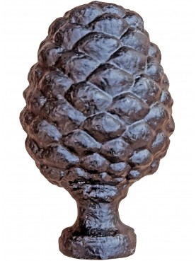 Ancient form of Pinecone from lucca