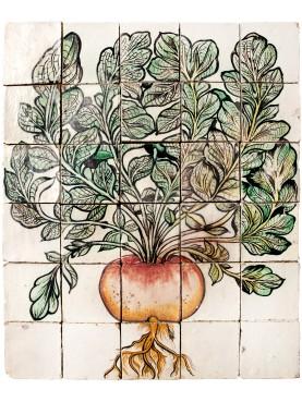 Majolica Panel red radish Ulisse Aldrovandi