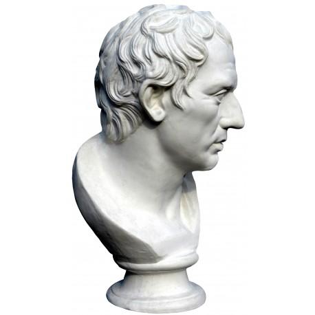 Plinio - roman statue - plaster cast