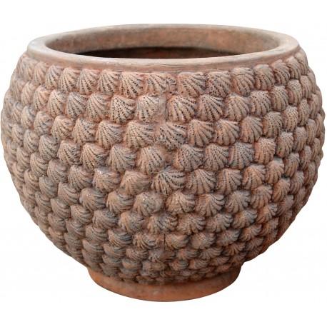 Vase with Cardium edule prints