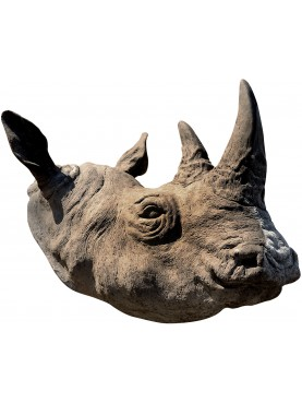 Testa di Rinoceronte in terracotta trofeo