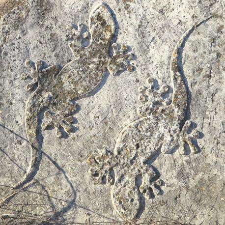 Geco in altorilievo su pietra