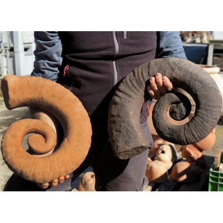 Calco in terracotta di Ammonite Eteromorfa fossile