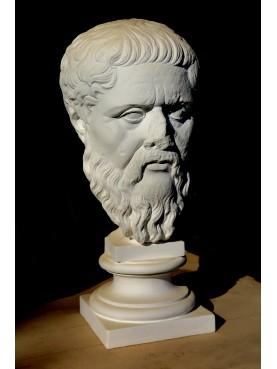 Mezzo busto testa di Platone in gesso della Glyptothek di Monaco