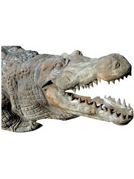 Coccodrillo scultura in terracotta 1:1 fatto a mano
