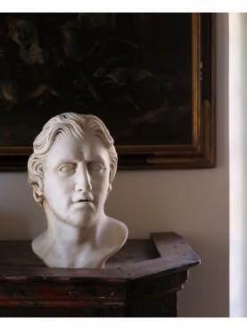 La nostra testa di Alessandro Magno - marmo Pario