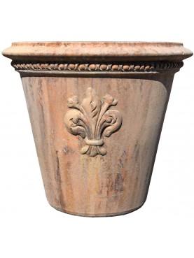 Conchino da Limoni con giglio fiorentivo vaso terracotta