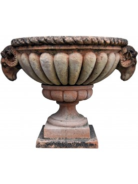 Vaso baccellato con teste di Ariete terracotta calice