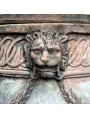 Particolare della testa di leone