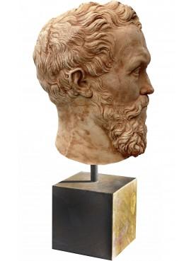 Testa di Michelangelo - basetta inclusa