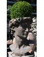 Terracotta Michelangelo's head - flowerpot