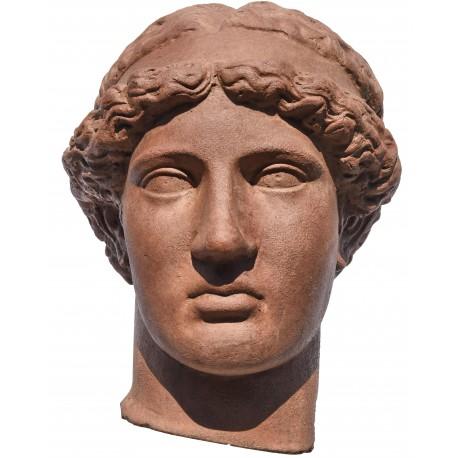 Testa in terracotta di Atena Lemnia di Fidia - copia della testa del museo di Bologna