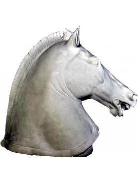 Testa di Cavallo greco della Galleria degli Uffizi gesso