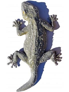 Tiled gecko - Tarentola mauritanica - large size