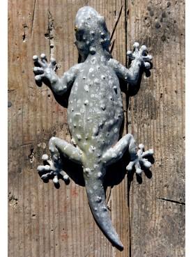 Tiled gecko - Tarentola mauritanica