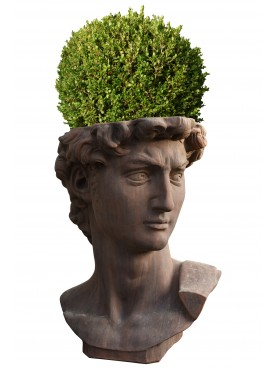 "Terracotta Michelangelo's head - flowerpot ""David Bosso"""