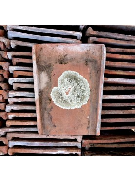Tegola toscana ANTICHE tegole toscane romane piatte