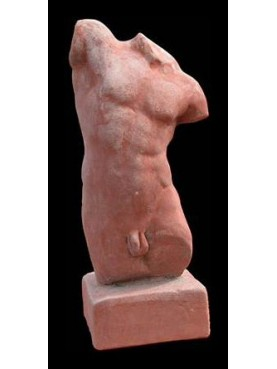 Busto maschile in terracotta
