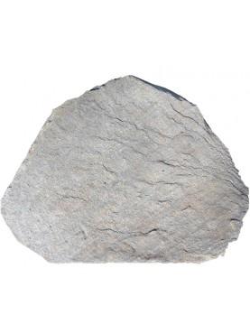 Old Cardoso stone