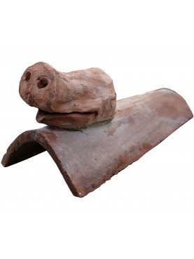 The duck on the roof tile