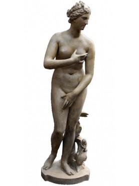 MEDICI'S VENUS concrete statue