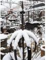 Durante la nevicata del 1° Marzo 2018