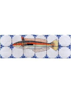 Pannello maiolica pesci - Donzella - Coris julis