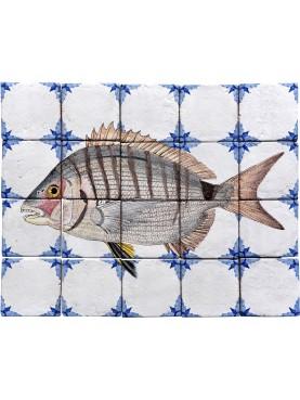 Fishes majolica panel - Seabream - 20 tiles
