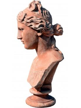 Terracotta Greek woman head bust
